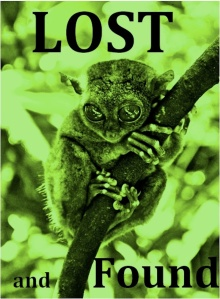 Lost and Found Cover Kindle Select