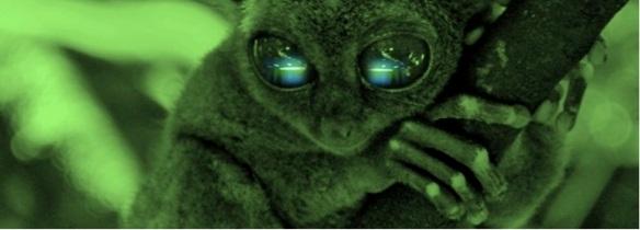 lost-found-promo-flyg-saucer-eyes